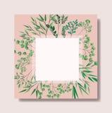 Cadre carré avec des feuilles de laurier illustration de vecteur