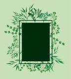 Cadre carré avec des feuilles de laurier illustration libre de droits
