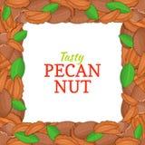 Cadre carré composé de noix de pécan délicieuse Illustration de carte de vecteur Écrous, fruit de noix dans la coquille, entier,  Photo stock