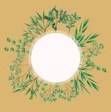 Cadre circulaire avec des feuilles de laurier illustration de vecteur