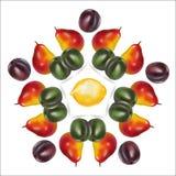 Cadre circulaire des poires vertes et les prunes et le citron pourpres au centre Image libre de droits