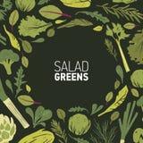 Cadre circulaire fait de plantes vertes, feuilles de salade et herbes d'épice sur le fond noir Contexte décoratif avec rond illustration stock