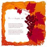 Cadre coloré de vintage avec le groupe de raisin Photo stock