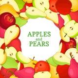 Cadre coloré rond composé de fruit de poire de pomme Delicious Photos libres de droits