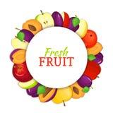 Cadre coloré rond composé de fruit de prune de pomme Delicious Illustration de carte de vecteur Prunes de pommes de cercle Frais  Photos libres de droits