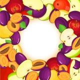 Cadre coloré rond composé de fruit de prune de pomme Delicious Illustration de carte de vecteur Cadre de pommes de prunes de trou illustration stock