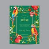 Cadre coloré tropical d'oiseaux, de grenades et de fleurs de perroquet Image stock