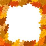 Cadre décoratif de feuilles d'automne Image stock