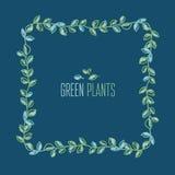 Cadre décoratif de feuilles de couleur fraîche de ressort Images libres de droits