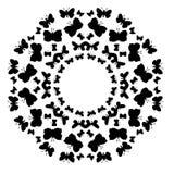 Cadre décoratif de modèle avec des papillons sur le fond blanc Photo libre de droits
