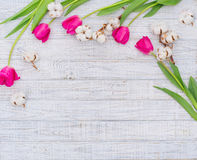 Cadre décoratif de ressort Photo stock