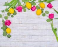 Cadre décoratif de ressort Photographie stock libre de droits