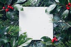 Cadre décoratif des branches d'arbre de Noël et des baies W de houx photo stock