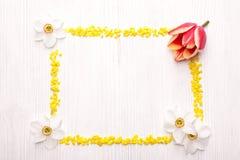 Cadre décoratif des dafodils Images stock