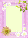Cadre décoratif des fleurs Photographie stock libre de droits