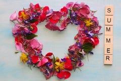 Cadre d'été avec beaucoup de belles et colorées fleurs Photos libres de droits