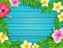 Cadre d'été sur le fond en bois Photo libre de droits