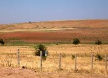 Cadre d'état d'Uzbekistan Uzbekistan-Kazakhstan 2007 Image libre de droits