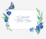 Cadre d'aquarelle des fleurs et du papillon bleus Photos libres de droits