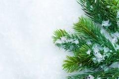 Cadre d'arbre de Noël Photographie stock libre de droits