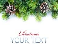 Cadre d'arbre de Noël image stock
