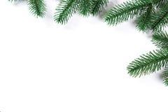 Cadre d'arbre de sapin de Noël sur le fond blanc L'espace libre Photographie stock