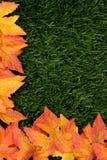 Cadre d'automne Photographie stock libre de droits