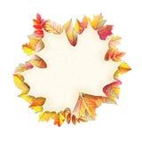 Cadre d'automne avec la feuille de chute ENV 10 Photo stock