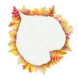 Cadre d'automne avec la feuille de chute ENV 10 Image stock