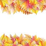 Cadre d'automne avec la feuille de chute ENV 10 Image libre de droits
