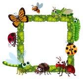 Cadre d'herbe avec beaucoup d'insectes illustration stock