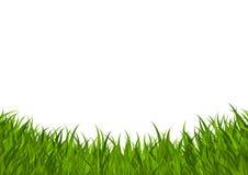 Cadre d'herbe verte Image libre de droits