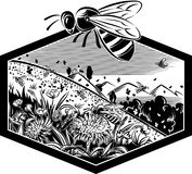 Cadre d'hexagone avec des abeilles de travailleur sur des fleurs illustration de vecteur