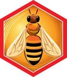 Cadre d'hexagone avec l'abeille illustration stock