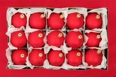 Cadre d'ornements de Noël Photo stock