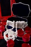 Cadre de bijou photo libre de droits