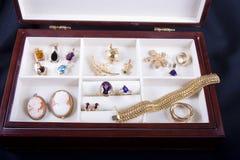 Cadre de bijou intéressant Image stock