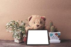 cadre de blanc de prise d'ours de nounours de vintage avec le cactus et le chamom sec Photos libres de droits