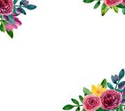 Cadre de bouquet Images libres de droits
