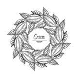 Cadre de cacao Calibre de dessin de superfood de vecteur Fruit, feuille et illustration libre de droits