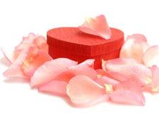 Cadre de cadeau en forme de coeur rouge avec des pétales de Rose Photos stock