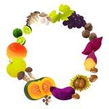 Cadre de cercle des légumes d'automne Images libres de droits