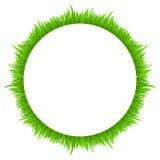 Cadre de cercle fait en herbe sur le blanc Ressort frais, frontière d'herbe verte d'été pour votre conception Photo libre de droits