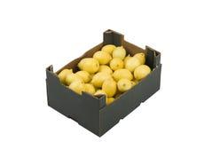 Cadre de citrons Photo stock
