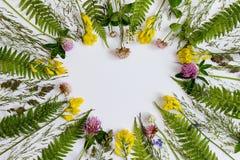Cadre de coeur de Wildflowers La vue supérieure Cadre de fleur sur un t blanc Image libre de droits
