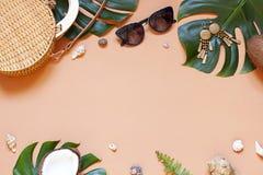 Cadre de concept de vacances d'?t? avec des coquillages et des feuilles tropicales Vue sup?rieure image stock