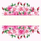 Cadre de conception de vecteur de roses de frontière illustration de vecteur