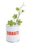Cadre de donation et plante verte Image libre de droits