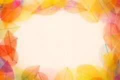 Cadre de feuilles d'automne Photo stock