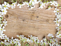 Cadre de fleurs blanches sur le fond en bois brun, Photos stock